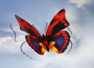 Werde ich sicher behalten: Den 3D-Schmetterling