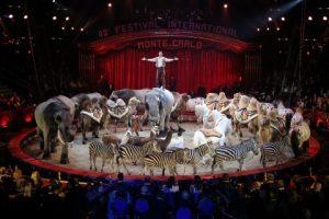 Circus-Festival Monte-Carlo 2018
