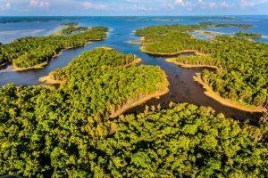 viaprinto engagiert sich auch in einem speziellen Klimaschutzprojekt. Quelle: www.climatepartner.com/1032