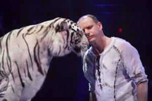 Mit einem Silbernen Clown wurde die Tigernummer von Sergey Nesterov ausgezeichnet.