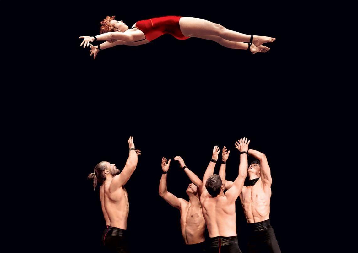 Neuer Zirkus aus Australien in Berlin: WUNDERKAMMER