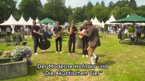 Stefan Koller, Moderner Hofnarr