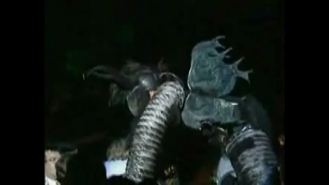 Video: Insektopia