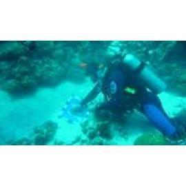 Unterwasserk�nstler Markus Asmus