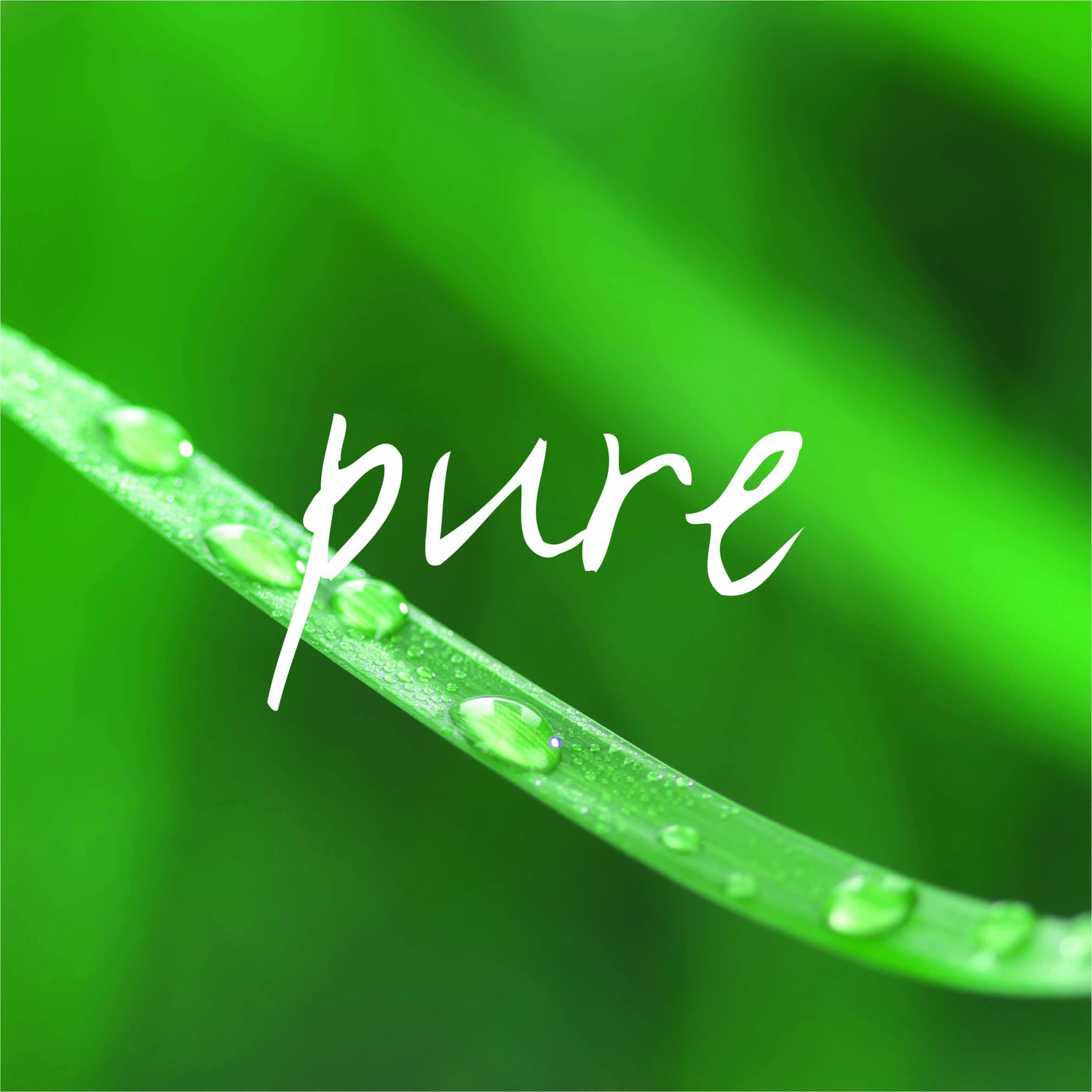 Die nachhaltige Marke Papstars Pure steht für Produkte aus nachwachsenden Rohstoffen, die auch biologisch abbaubar sind.