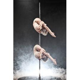Duo Sienna Aerial Hoop & Vertical Pole