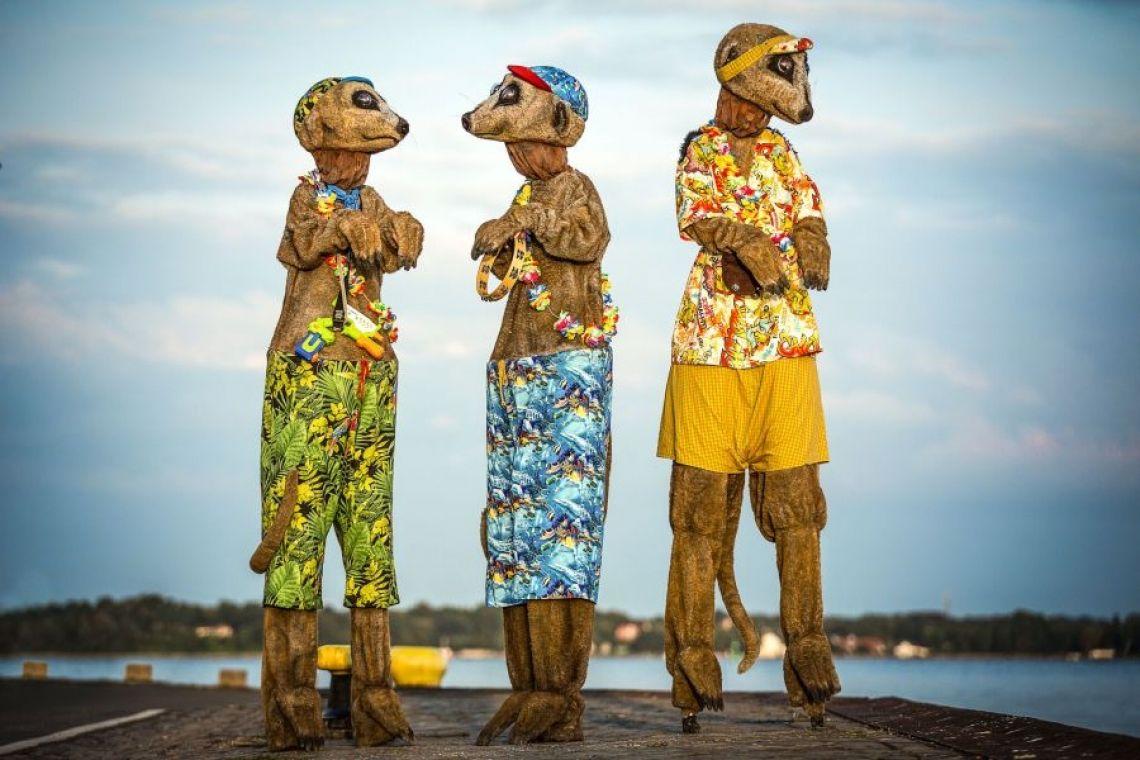 Die drei Erdboys Drei aufgedrehte Erdmännchen lassen die Flower Power Hippiezeiten wieder lebendig werden: Mal schüchtern, mal süß, mal frech, mal flippig und immer bunt und gut gelaunt ziehen sie durch die Menschenmengen zu ihren Füßen, unterstützt durch den klassischen Beachboy-Sound der 70er, und verbreiten Partystimmung und Lebensfreude. Gute Laune und lachende Gesichter sind vorprogrammiert bei dieser größten Erdmännchen-Boygroup der Welt.  Produktpräsentation durch Tragen von gebrandeten T-Shirts und/oder Flaggen möglich.  Buchbar als Duo oder Trio.  Bis zu 3 x 25 Minuten innerhalb von ca. 4 Stunden, gegen Aufpreis auch 4 Sets innerhalb von 4-5 Std. möglich.