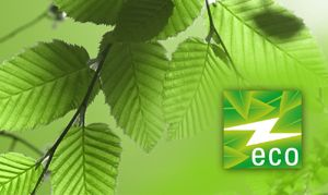 Einleuchtend effizient: Lightpower startet eco-Label