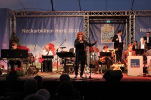 GEMCO betreut die Bosch Big Band beim Neckarblühen in Horb