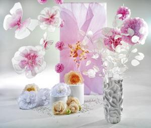 Der Frühling lockt mit Blütenfülle