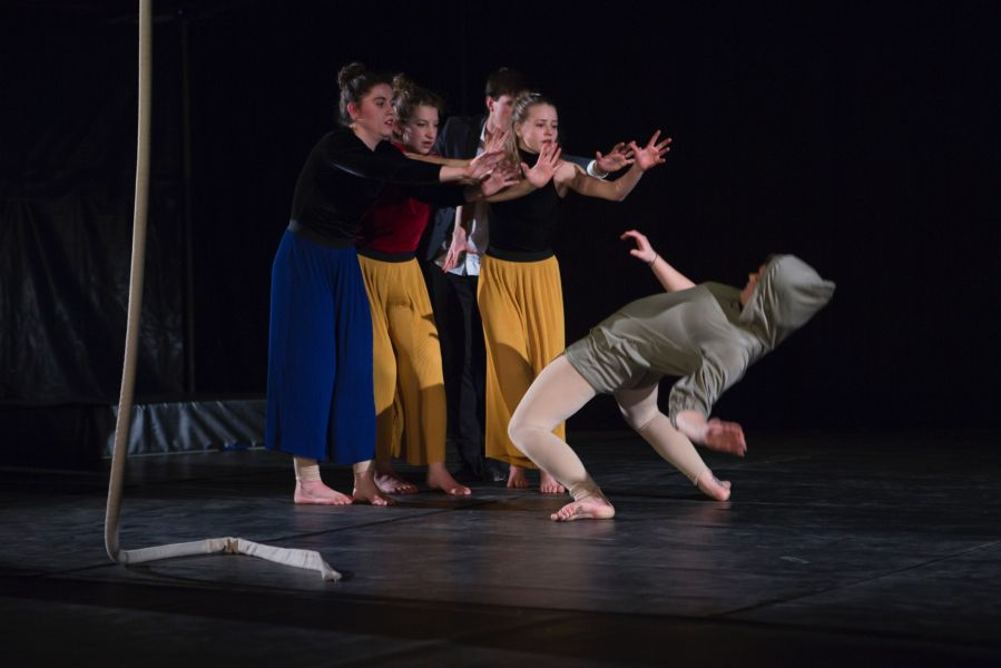 Das Cirque Intense Preparatory- & Berufsorientierungsjahr
