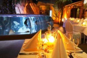 Großaquarium in einen exklusiven Veranstaltungsort: Sea Life Hannover