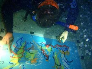 Unterwasserwerke - Malen in einer anderen Dimension