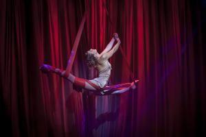 Aurélie Bernard - Die bärtige Lady am Static Cloud Swing