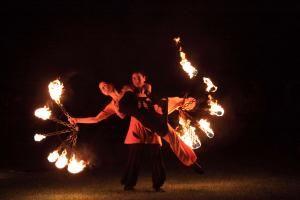 Feuerfeen - ein Augenschmaus voll Ästhetik und Poesie!