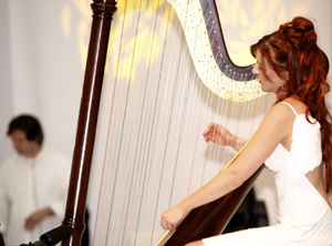 Psalter und Harfe, wacht auf!