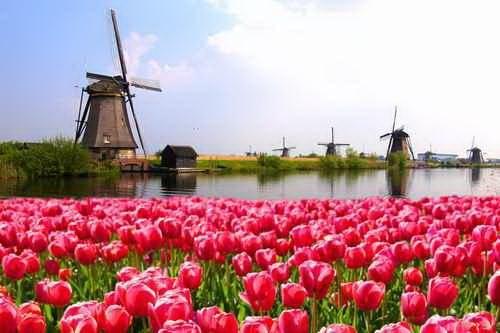 Eventland Niederlande